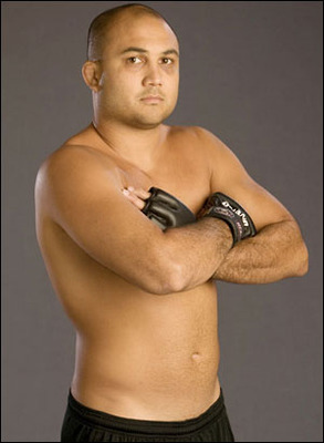 Bjpenn1_display_image