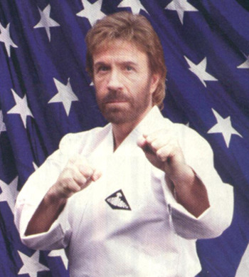 Chuck_norris_display_image