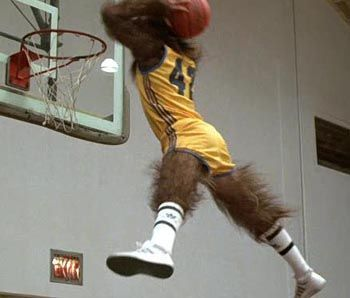 Teen_wolf_1_display_image