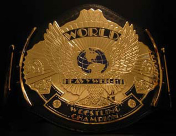 History-of-the-wwf-wwe-world-title-11-discs-free-postage-56248_display_image