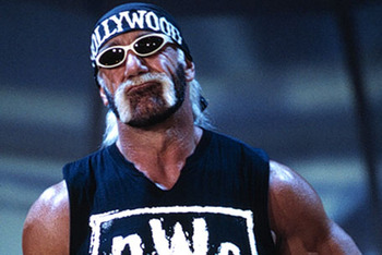 Hollywood_hulk_hogan_display_image