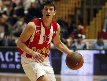 Nedovic_display_image
