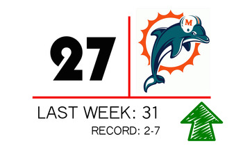 New27dolphins_display_image