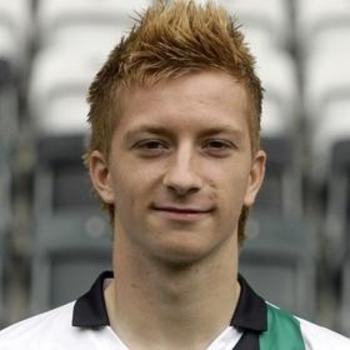 Marcoreus_display_image