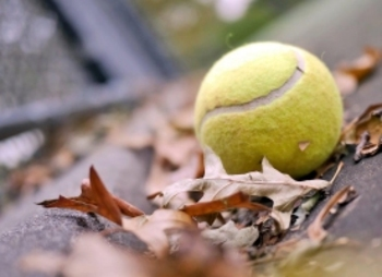 Tennis_ball-t1_display_image