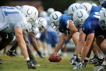 Coltslinestraining_display_image