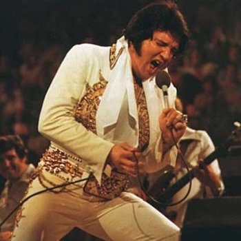 Hoganelvis_display_image