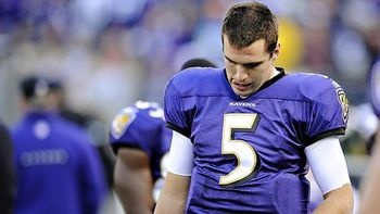 Flacco_display_image