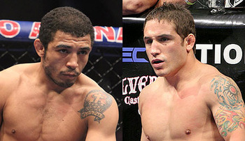Aldo-v-mendes-450x260_display_image