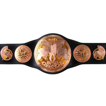 Wwe-world-tag-team-titles-2010-2_display_image