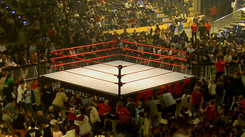 Wwe_ring_display_image