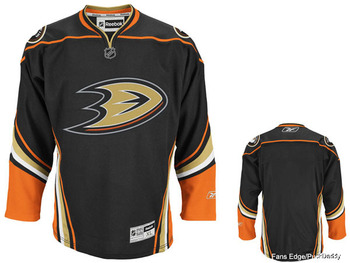 Anaheimducks_display_image
