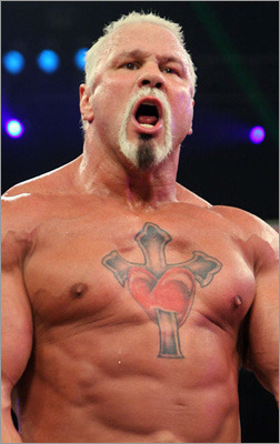 Scott-steiner_display_image