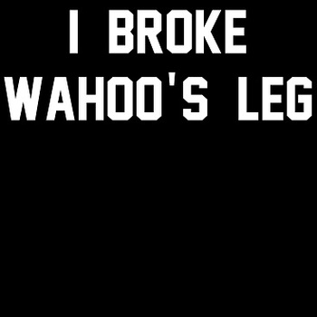 Ibrokewahooslegshirtswesold_display_image