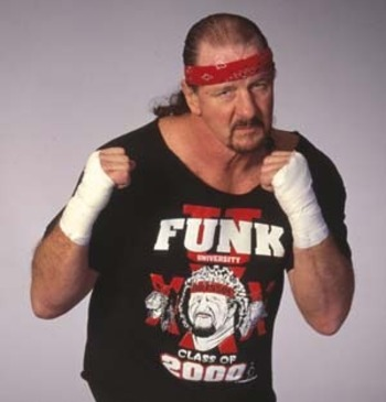 Terryfunk_display_image