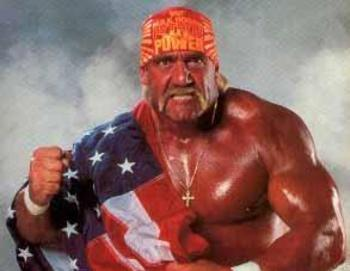 Hulkhogan3_display_image
