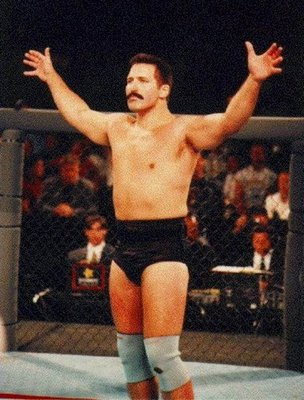 Dan_severn_45dbc53fe3441_display_image