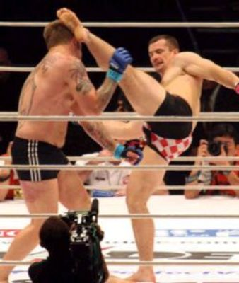 Cro-cop-knocks-out-aleksander-emelianenko_display_image