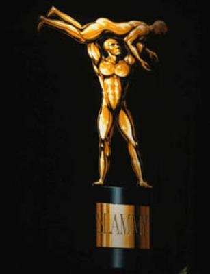 Wwe-slammy-award_display_image