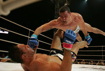 Shogundivingpunch_display_image