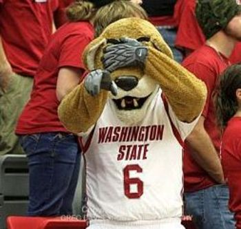 Butch-t-cougar-washington-state-basketball-gdsports000107_display_image