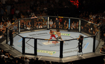Ufc_20octagon-thumb-1000x609-833_display_image