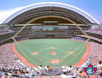 Skydome_display_image