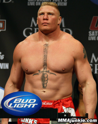 Brock-lesnar-15_display_image