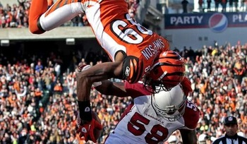 Jerome-simpson-flip-bengals-cardinals_display_image