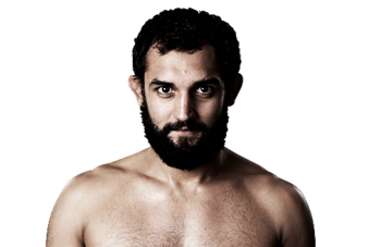 Johny_hendricks_500x325_display_image