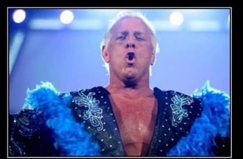 Ric-flair-8_display_image