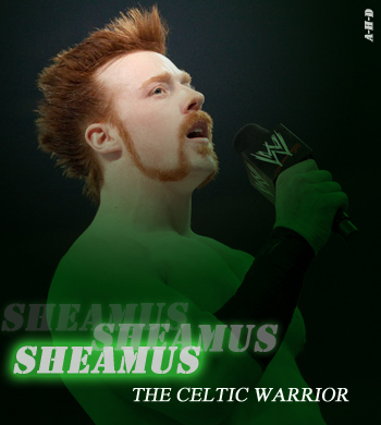 Sheamus-the-celtic-warrior-sheamus-15820445-350-390_display_image