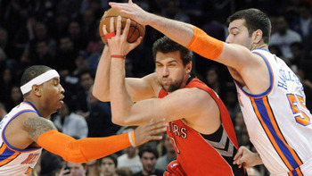 Andrea_bargnani_display_image
