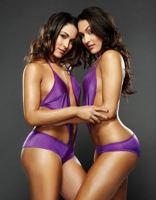 Bella-twins-the-bella-twins-15131966-458-586_display_image