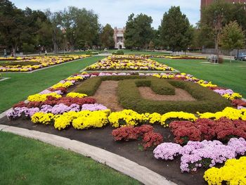 Oklahoma-campus_display_image