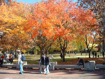 Michigan-campus_display_image