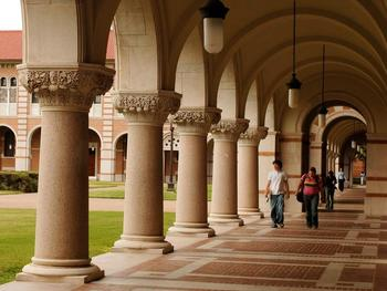 Rice-campus_display_image