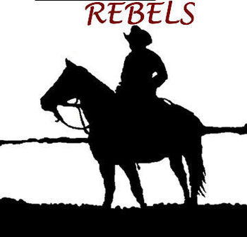Cowboysilhouettelarge_display_image
