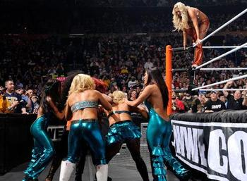 If I didn't know better, I'd say Vince didn't care about the Divas...oh wait...