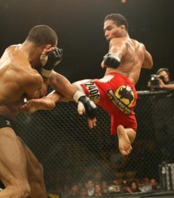 picture courtesy of mma-core.com