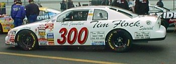 Dwtimflock_original_display_image