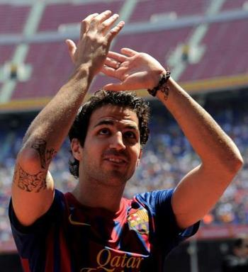 Cesc_display_image