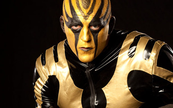 Goldust_display_image