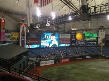 Raysfans_display_image