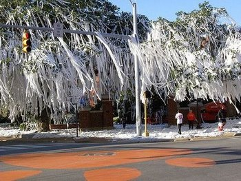 Toomers_display_image