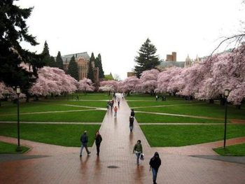 University-of-washington-seattle_display_image
