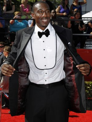 Amarestoudemire2_display_image