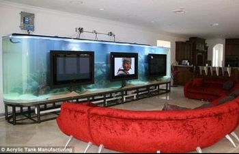 Chad-ochocinco-aquarium-2_display_image