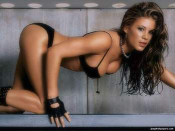 Ashley Massaro. Ashley-massaro-307907_display_image