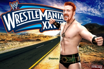 Sheamus2012wrestlemania28wallpapercelticwarriorgreatwhiteroyalrumblewwe_display_image